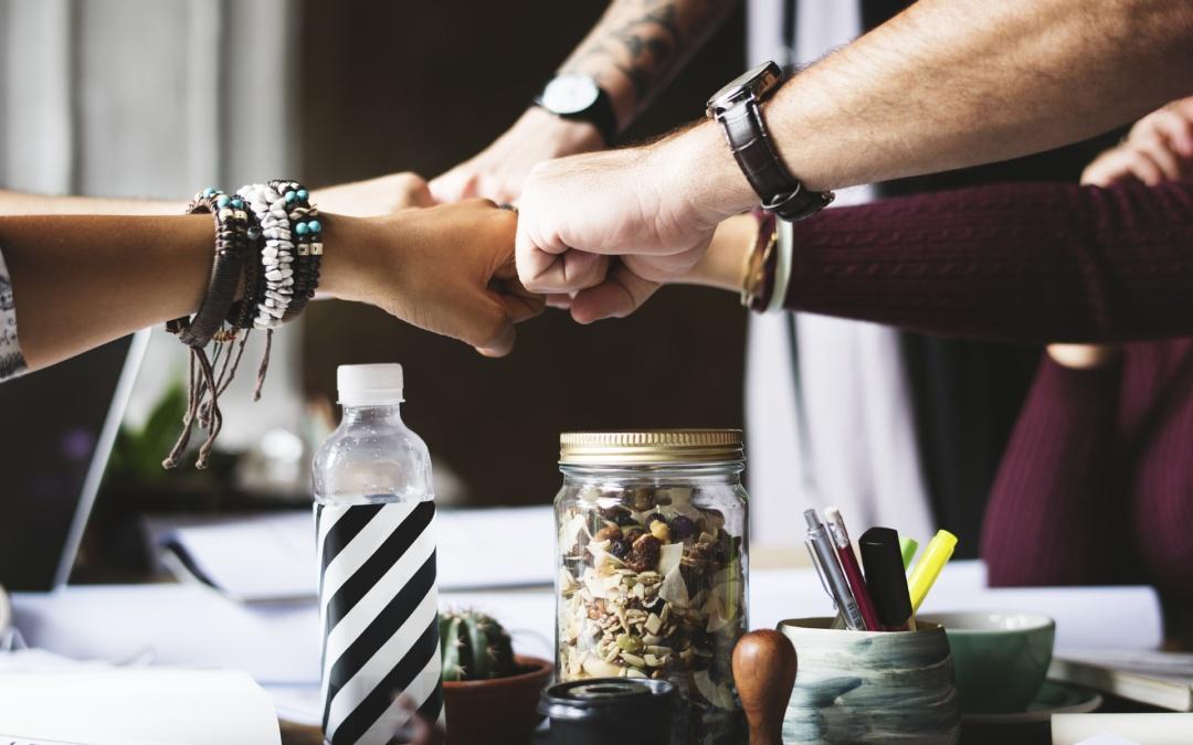 Kutatás a társadalmi vállalkozások támogatási igényeiről és tapasztalatairól