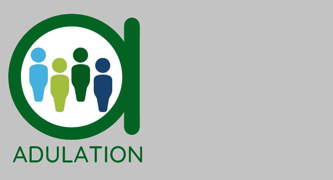 Új projekt: ADULATION – Felnőttképzés a társadalmi változásért